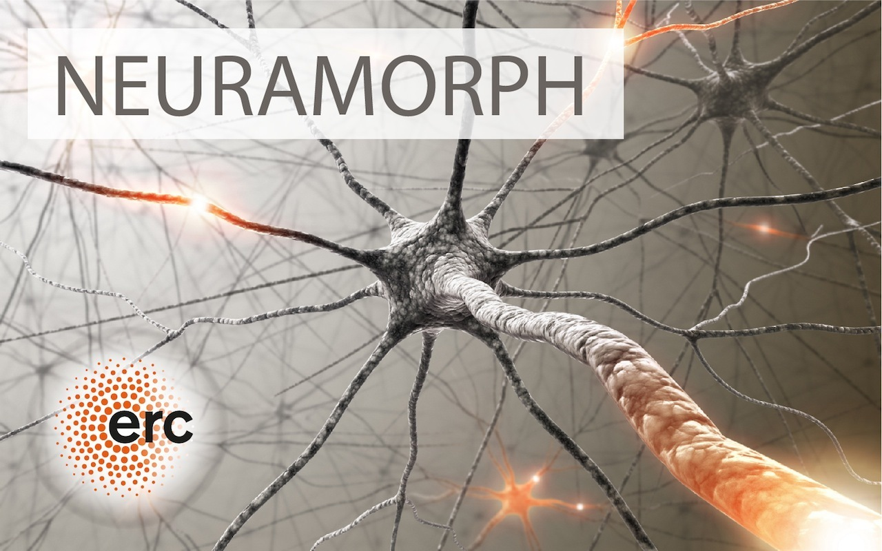 Logo of the ERC-project NEURAMORPH